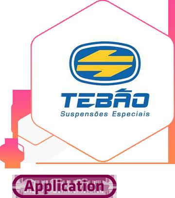 Logo+produto_Tebão